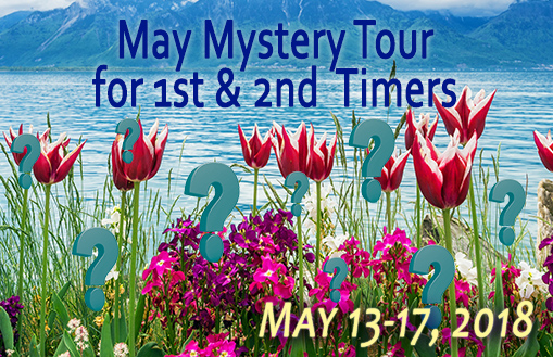 Mystery Tour for 1st Timers